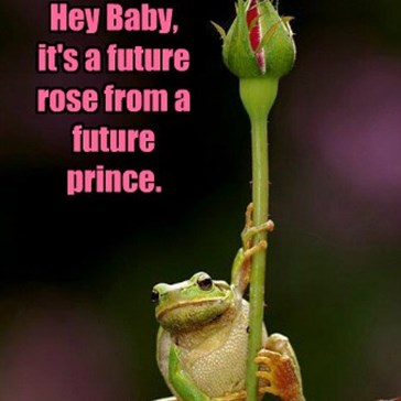 Frogs Have the Best Pickup Lines