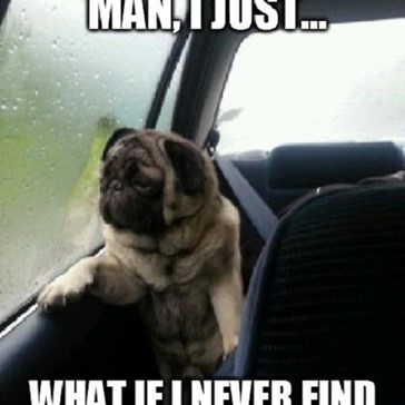 Spoiler Alert, Introspective Pug, but the Answer is YOU!
