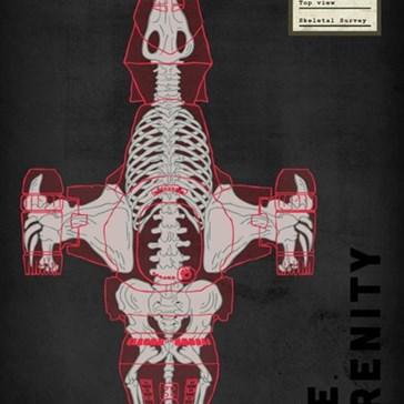 Spaceship Skeletons