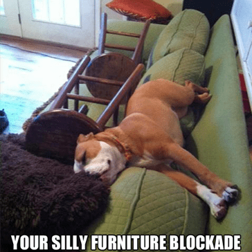 One Determined Napper