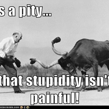 It's a pity...  that stupidity isn't painful!