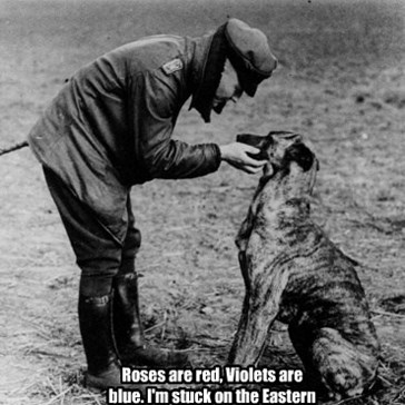 Roses are red, Violets are blue. I'm stuck on the Eastern front... AND SO ARE FUCKING YOU!