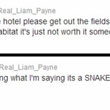 A Twitter Message To The Girls Sneaking Around One Direction's Australian Hotel