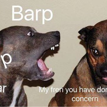 These Random Bork Memes Are Giving Us a Funny