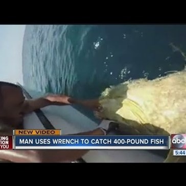 Of Course a Florida Man Could Catch a 400-Pound Goliath Grouper with a Wrench
