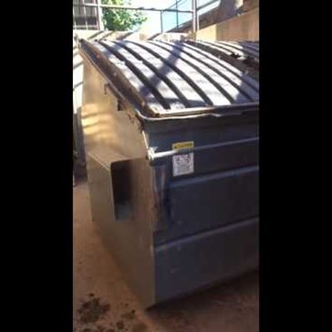 Dude Kicks a Bear out of His Dumpster Like It's No Big Deal