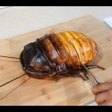 This Madagascar Hissing Cockroach Cake Oozes Cream and Will Haunt Your Dreams