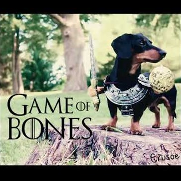 "The Lord of Weinerfell Stars in This Adorable Parody: ""Game of Bones"""