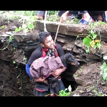 Dogs Wails Sobs of Joy as Rescue Team Saves Her From a Deep Well in India