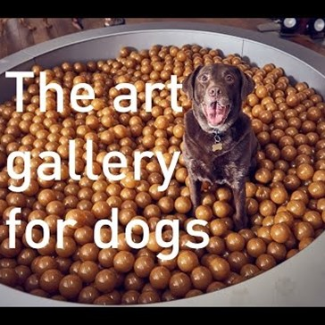 An Interactive Art Exhibit for Dogs Just Opened in London and It's Tail-Waggingly Good