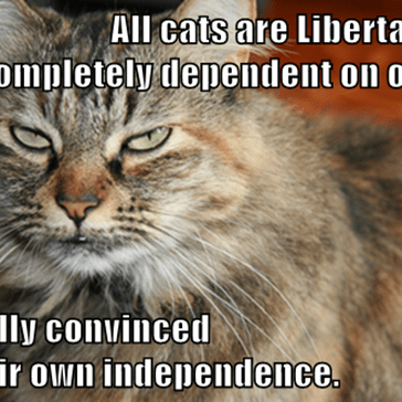 All cats are Libertarians.                                                            Completely dependent on others,  but fully convinced                                                                      of their own independence.