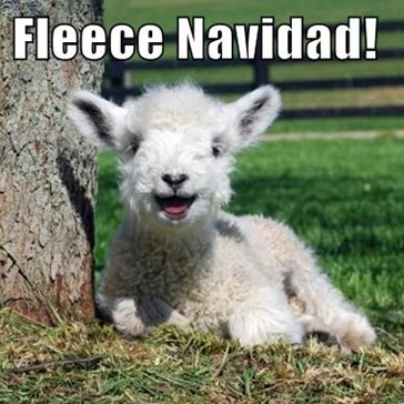 I Wanna Wish Ewe a Merry Christmas!