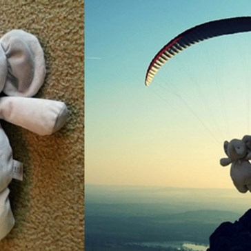 Kid Loses His Elephant Adventure Buddy And the Internet Sends It Around the World