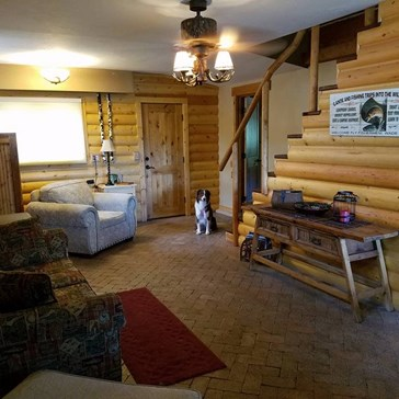 Can You Find the Dog Lurking in All of These Cabin Photos?