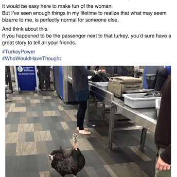 When Your Travel Companion is a Turkey You're Bound to Get a Cornucopia of Attention
