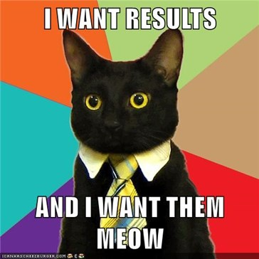 I WANT RESULTS  AND I WANT THEM MEOW