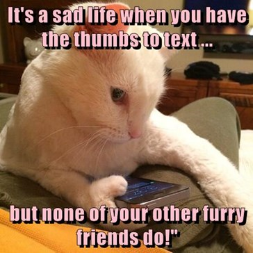 """It's a sad life when you have the thumbs to text ...  but none of your other furry friends do!"""""""