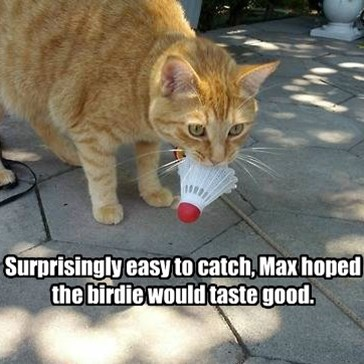 Surprisingly easy to catch, Max hoped the birdie would taste good.