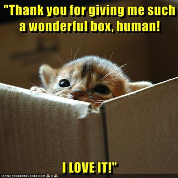 """Thank you for giving me such a wonderful box, human!  I LOVE IT!"""