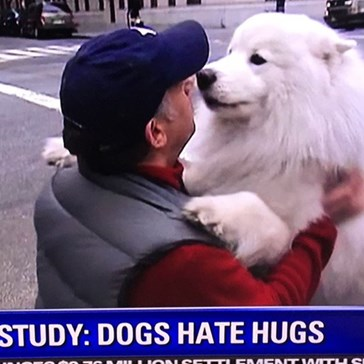 The Most Depressing Study Claims That Dogs Hate Hugs