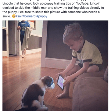This Kid Is About to Be the next Cesar Millan