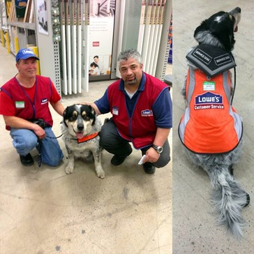 Good Guy Lowe's Hired a Man and His Support Dog After No One Else Would