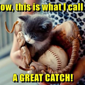 Moar Kittens in Baseball Plz