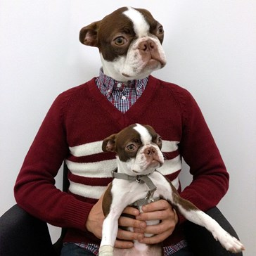 We were asked to bring our dogs to work for picture day. They didn't tell us why. This is why.