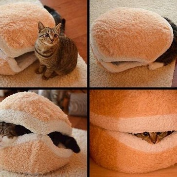 I Can Become Cheeseburger?