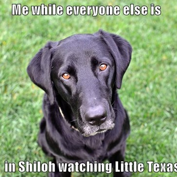 Me while everyone else is                     in Shiloh watching Little Texas!
