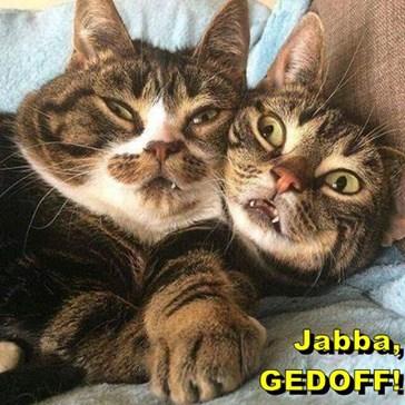 Jabba!!!