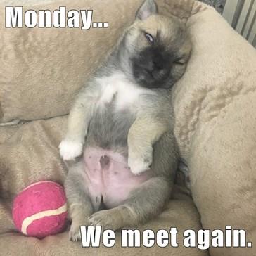 Monday...  We meet again.