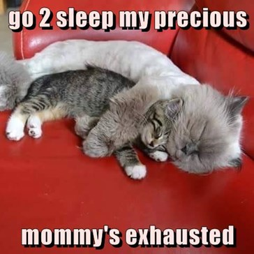go 2 sleep my precious  mommy's exhausted