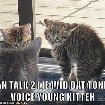 DOAN TALK 2 ME WID DAT TONE OV VOICE YOUNG KITTEH