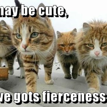 We may be cute,  but we gots fierceness too!