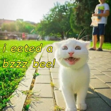 i eeted a                         bzzz bee!