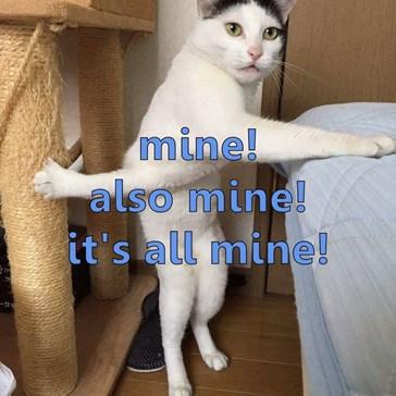 mine!                                                                                  also mine!                                                                      it's all mine!