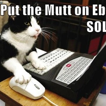 Put the Mutt on Ebay  SOLD!