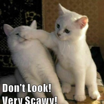 Don't Look!                    Very Scawy!