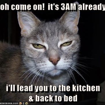 oh come on!  it's 3AM already  i'll lead you to the kitchen                                         & back to bed