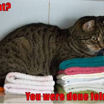 What?  You were done folding