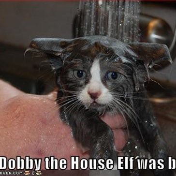 ...and Dobby the House Elf was born