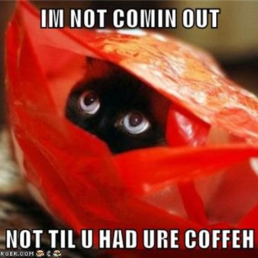 IM NOT COMIN OUT  NOT TIL U HAD URE COFFEH