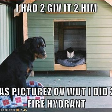 I HAD 2 GIV IT 2 HIM  HE HAS PICTUREZ OV WUT I DID 2 TEH FIRE HYDRANT