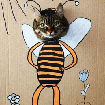 MISS BEE HAVER  WILL BE TODAIS DETENSHUN MONITOR