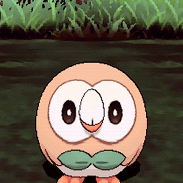Rowlet Is Honestly Too Lovable Tho