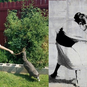 This Expertly Timed Photo of a Grandma Shooing a Cat Away Got a Photoshop Battle Worthy of Its Perfection