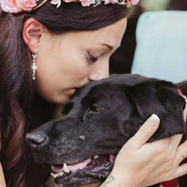 Dying Dog Lives Just Long Enough to Walk Down the Aisle at His Human's Wedding