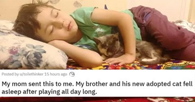 adopt adopted cats dogs shelter rescue animals cat dog kittens puppies aww | My mom sent this to me. My brother and his new adopted cat fell asleep after playing all day long. photo of a child sleeping on his side with one arm under his head and a kitten asleep under his other arm