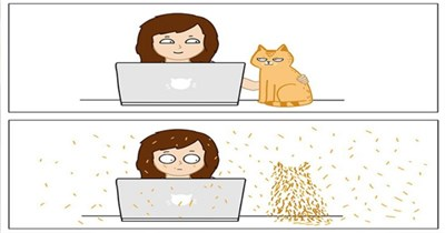 comics cats artist funny lol instagram aww cute animals web art | woman using a laptop petting an orange cat sitting beside her then the scene changes to everything being covered in fur cat hair